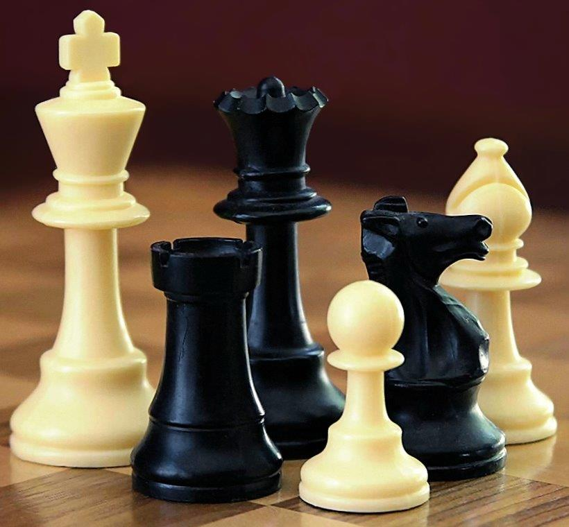 שחמט ערוגות מתחילים