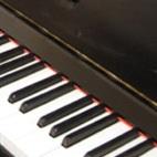 "פסנתר אלון שוורץ  45 ד"""