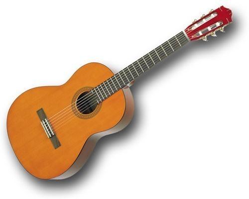 גיטרה שון דקל 45 ד