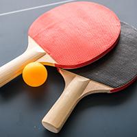 טניס שולחן אורות בוגרים